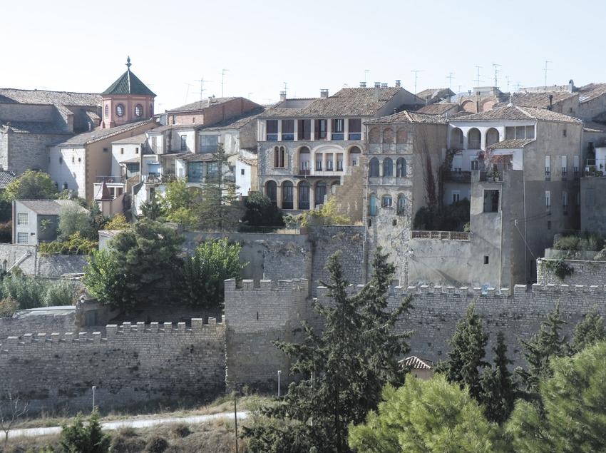 Vista parcial amb les muralles en primer terme  (Servicios Editoriales Georama)