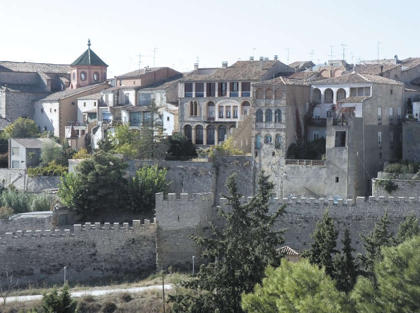 Vista parcial con las murallas en primer plano  (Servicios Editoriales Georama)
