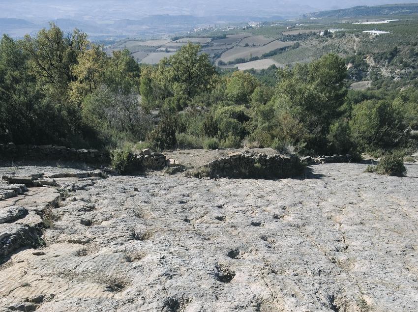 Yacimiento de icnitas de la Posa