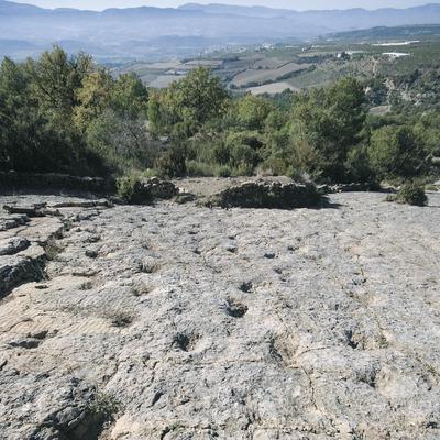 Jaciment d'icnites de la Posa  (Servicios Editoriales Georama)