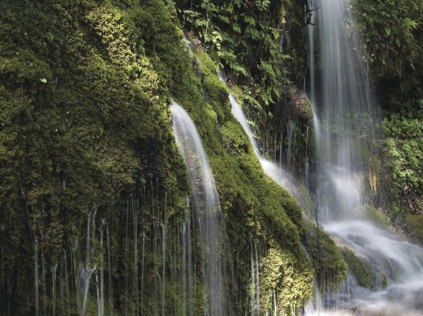 Sources de la Toscara, dans la région des Ports de Tortosa-Beseit
