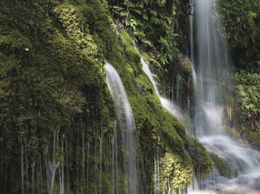 Springs of the Toscar, in Tortosa-Beseit pass