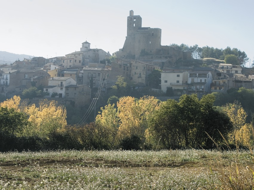 Vista del nucli i l'església i castell de Sant Vicenç  (Servicios Editoriales Georama)