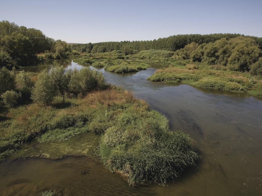 Der Fluss Segre