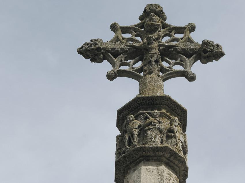 Cross  (Servicios Editoriales Georama)