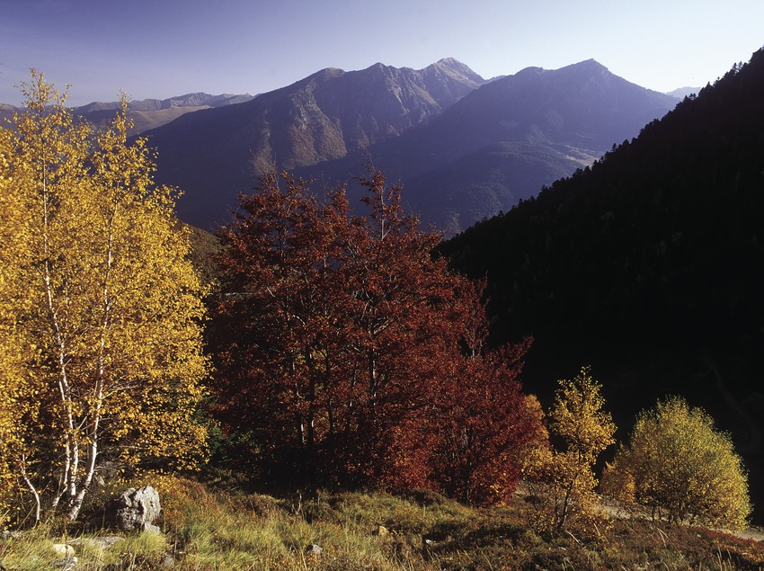 Vall del Garona.  (José Luis Rodríguez)