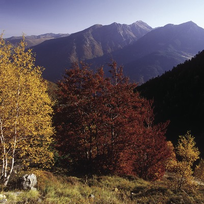 Valley of Garona.