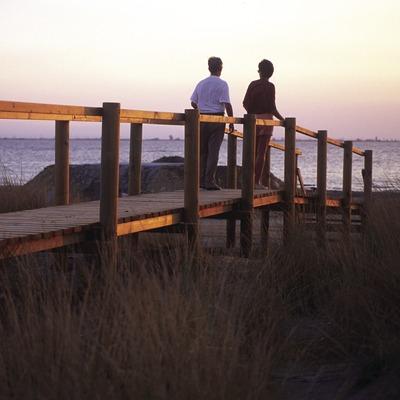 Beach of La Marquesa in the Delta del Ebro Nature Park