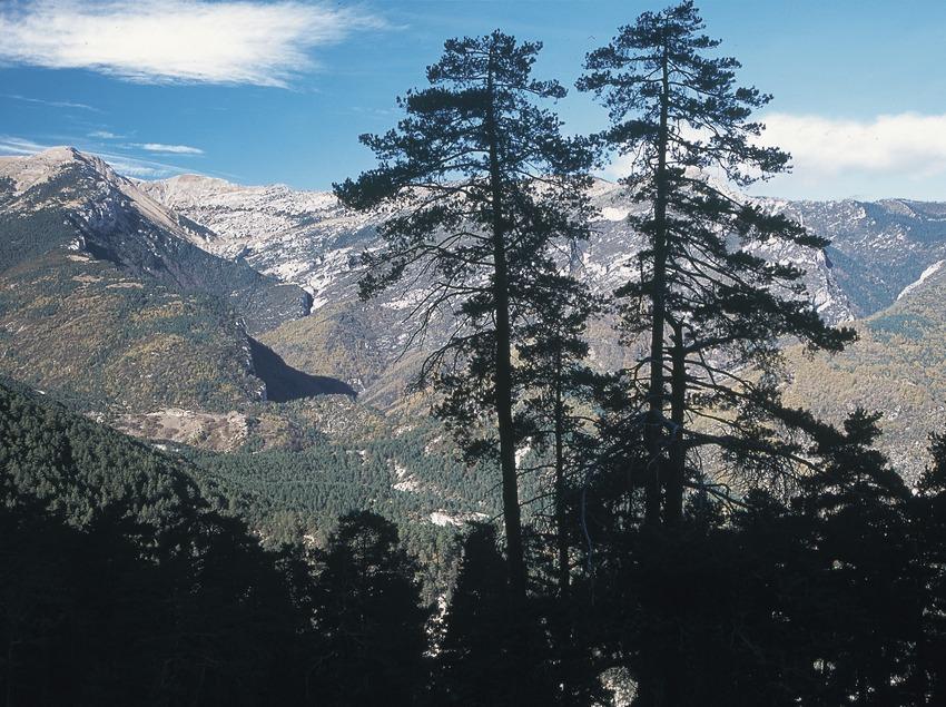 Contraforts de la serra del Cadi la serra d'Ensija  (Servicios Editoriales Georama)