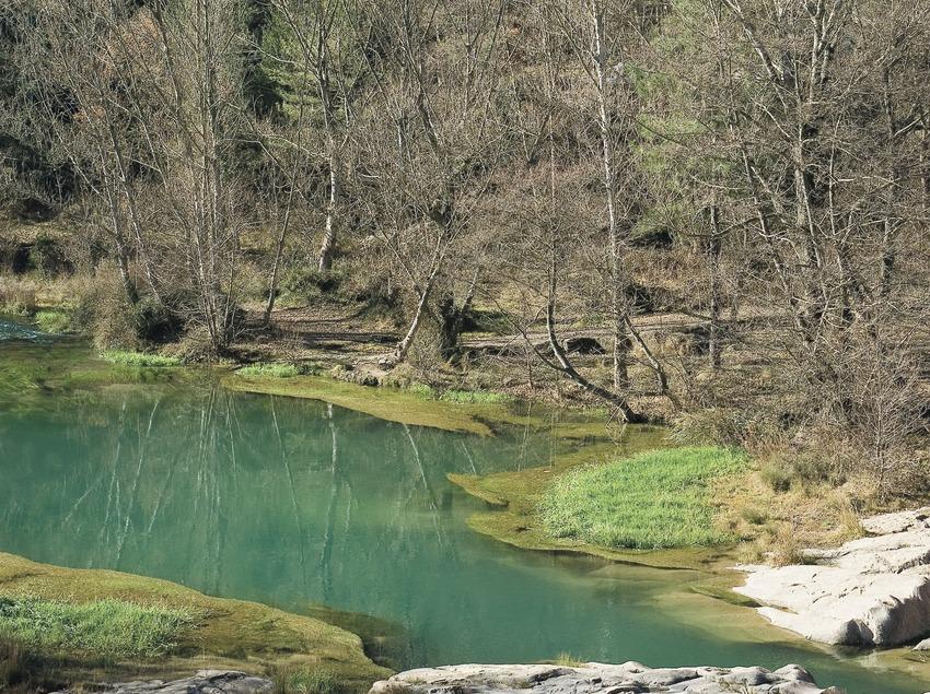 El riu Llobregat prop de la localitat de Cercs  (Servicios Editoriales Georama)