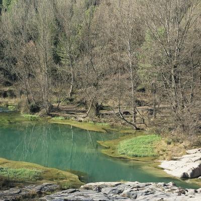 El río Llobregat cerca de la localidad de Cercs  (Servicios Editoriales Georama)