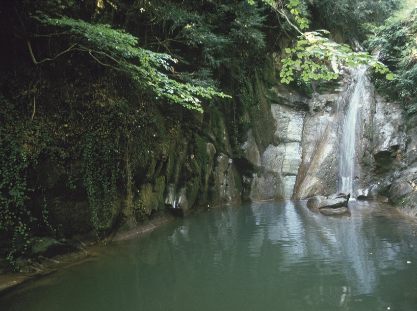Gorg dels Banyuts. Ruta Comte Arnau  (Turismo Verde, S.L.)