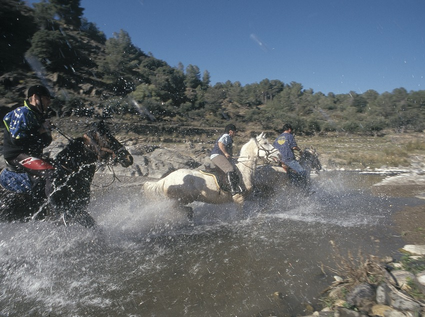 Horse riding in the Natural Park of the Montsant Sierra