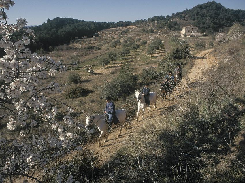 Reitsport im Naturpark Sierra de Montsant