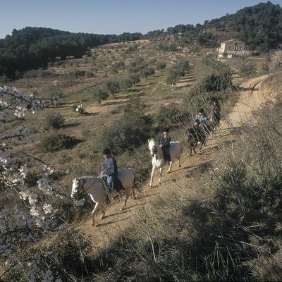 Hípica al Parc Natural de la Serra de Montsant  (Daniel Julián)