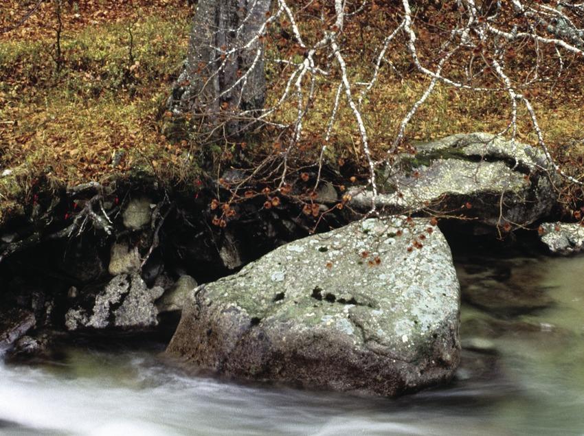 Riu Noguera Ribagorçana a prop de l'Espitau de Vielha