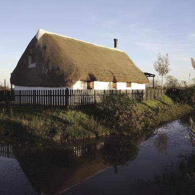 Barraca habilitada com a Casa de Turisme Rural, al Parc Natural del Delta de l'Ebre