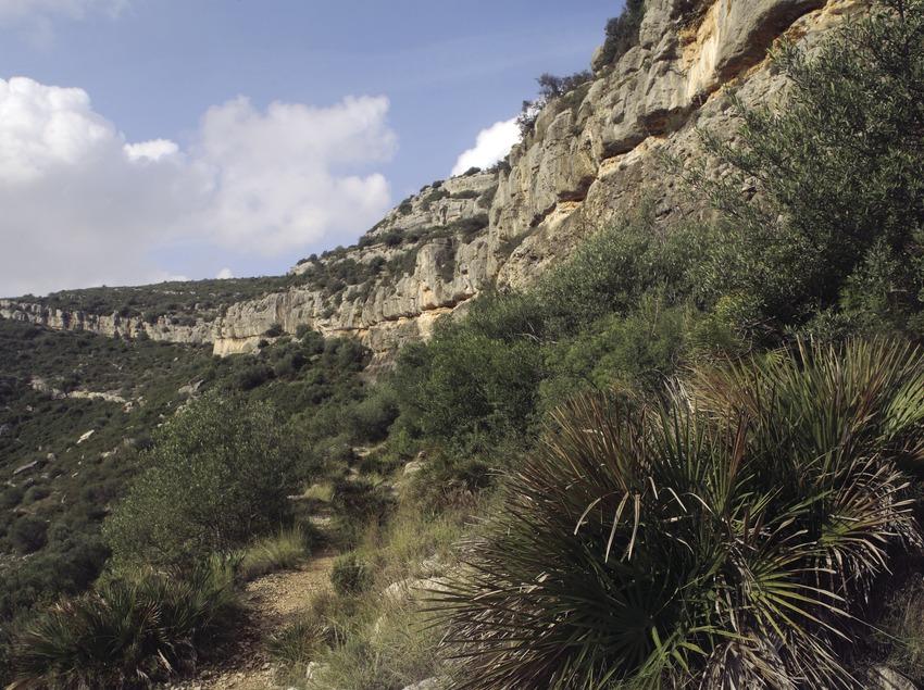 Serra de l'Ermita, on es troben els abrics d'art rupestre (Miguel Raurich)