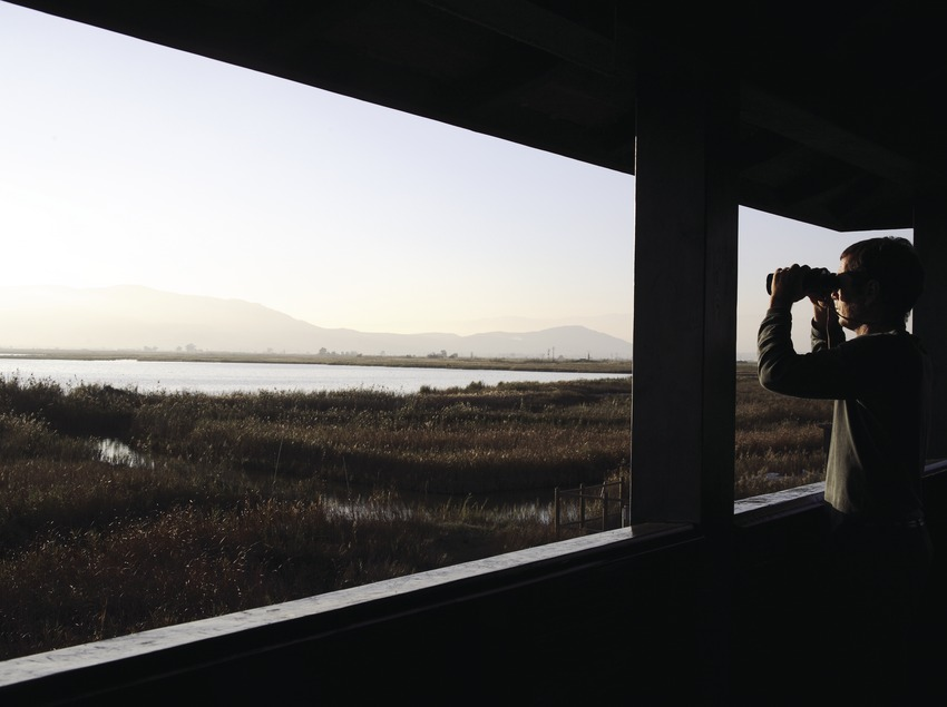 Balsa de la Encanyissada desde un observatorio de aves en el Parque Natural del Delta del Ebro  (Miguel Raurich)