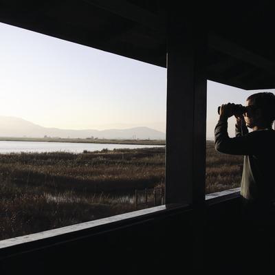 Balsa de la Encanyissada desde un observatorio de aves en el Parque Natural del Delta del Ebro