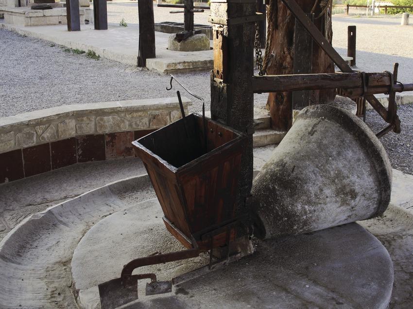 Prensa en el Parque Temático del Aceite. (Miguel Raurich)