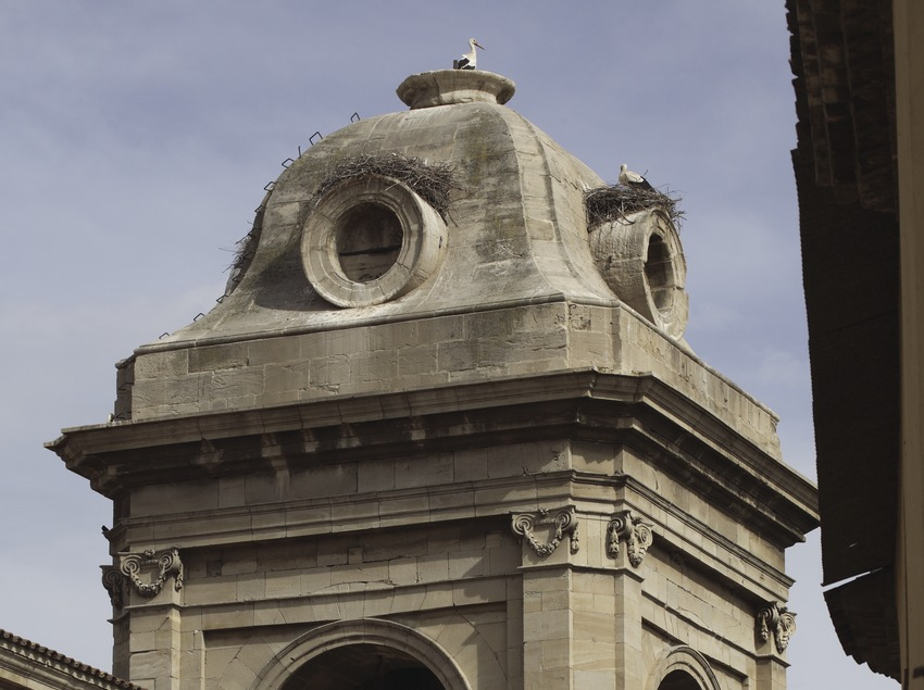 Bell tower and stork nest on the new cathedral  (Miguel Raurich)