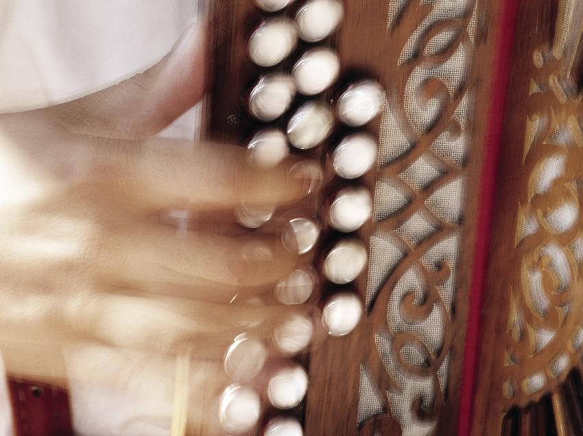Détail d'un accordéon lors du rassemblement d'accordéonistes des Pyrénées  (Miguel Raurich)