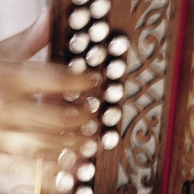 Detall d'un acordió durant la Trobada d'Acordionistes del Pirineu  (Miguel Raurich)