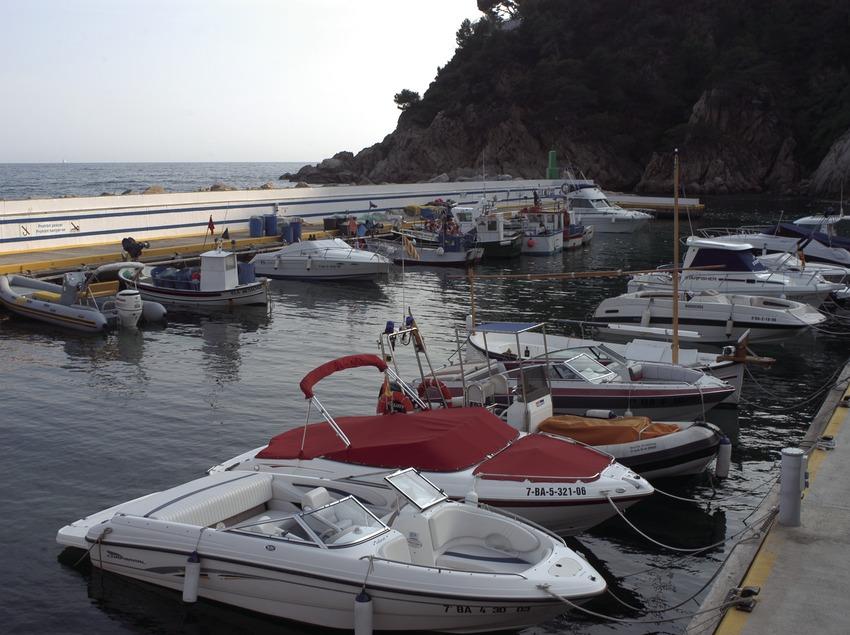 Embarcaciones atracadas en el puerto deportivo Cala Canyelles  (Marc Ripol)