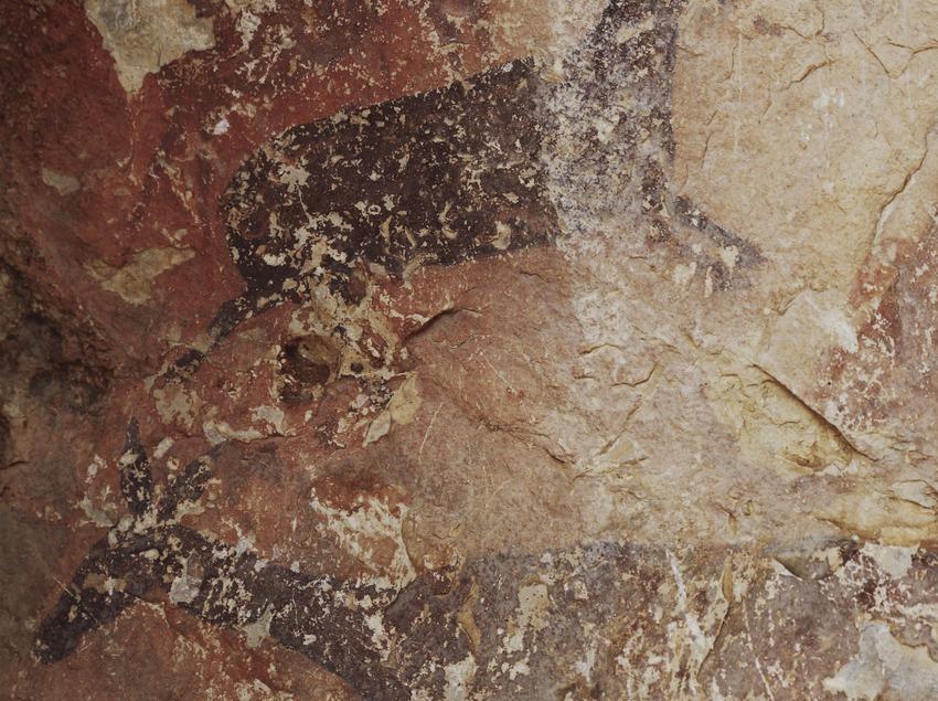 Detall d'una pintura rupestre a la cova de Cabra-Freixet a la serra del Boix