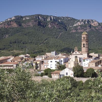 Vista de la localidad y la Sierra de Mussara, en las montañas de Prades  (Miguel Raurich)