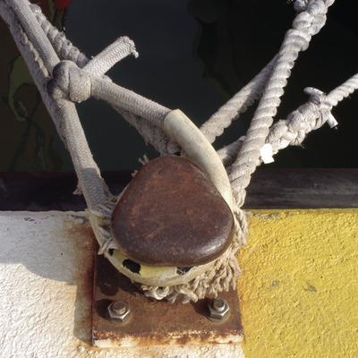 Cabos atados a un proíz en el Puerto del Estartit  (Marc Ripol)