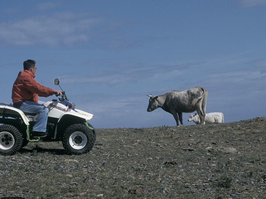 Quad bike. Cabo de Creus.  (Daniel Julián)