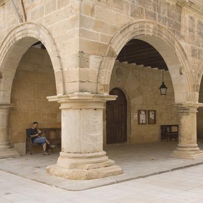 Soportal del palacio, actualmente ayuntamiento  (Miguel Raurich)