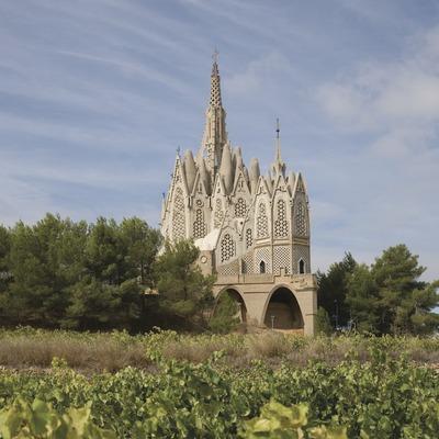 Santuari de la Mare de Déu de Montserrat i camp de vinyes  (Miguel Raurich)