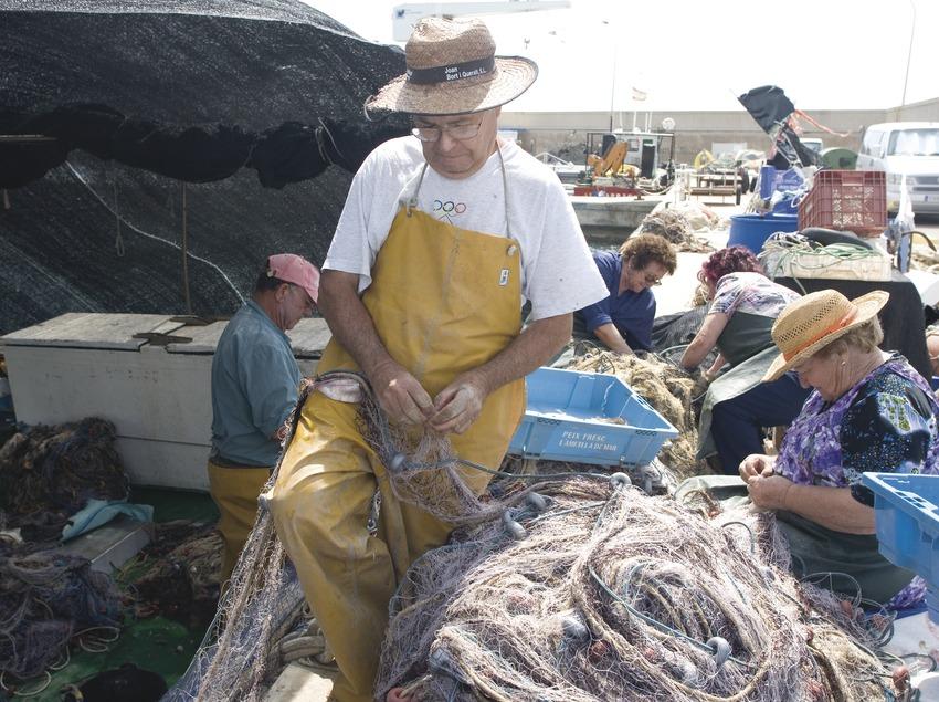 Ramassage du matériel de pêche dans le port  (Miguel Raurich)