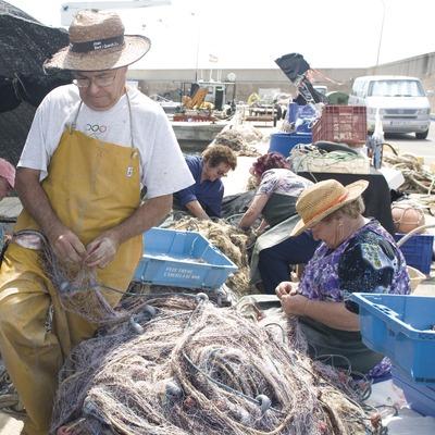 Recollida de la pesca d'arrell al port  (Miguel Raurich)