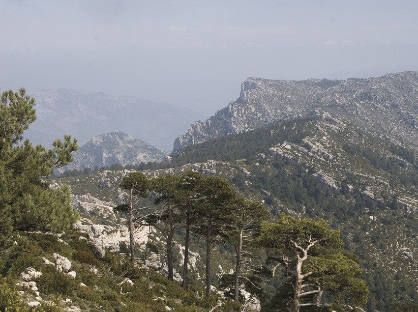 View of the Passes of Tortosa-Beseit from Mont-Caro  (Miguel Raurich)