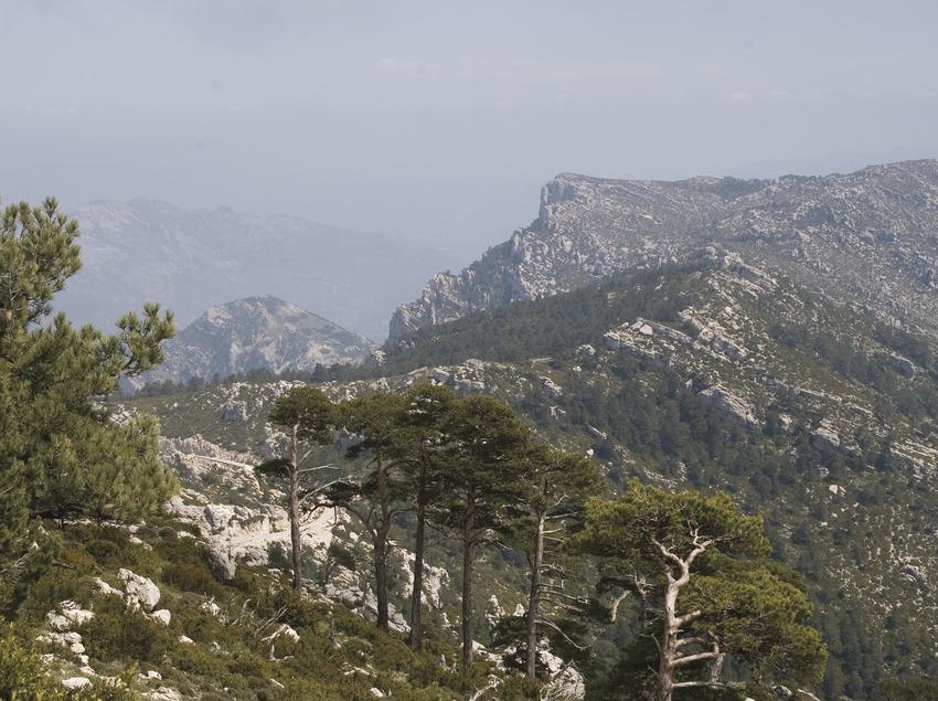 Vista del Vista del Parc Natural dels Ports des del Mont-Caro  (Miguel Raurich)