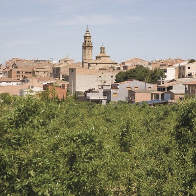 View of the town and almond trees