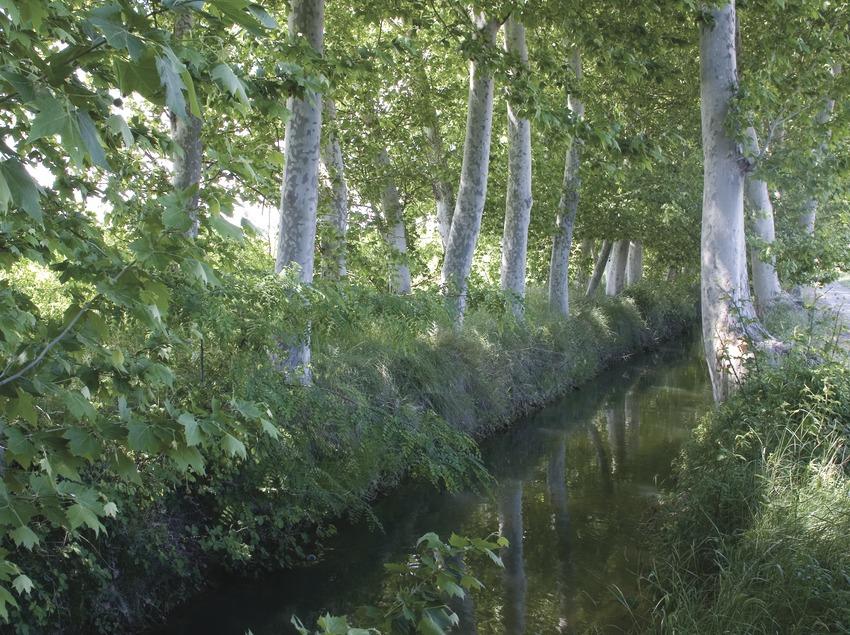 Les Borges Blanques. Canal d'Urgell a prop de la localitat.