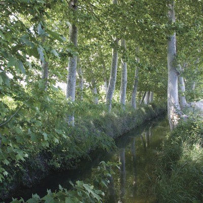 Les Borges Blanques. Canal of Urgell near the town.