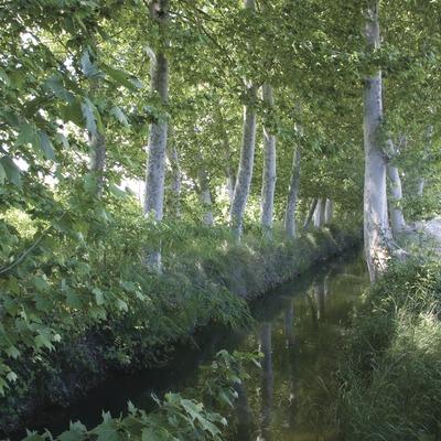 Les Borges Blanques. Canal d'Urgell près de la localité.
