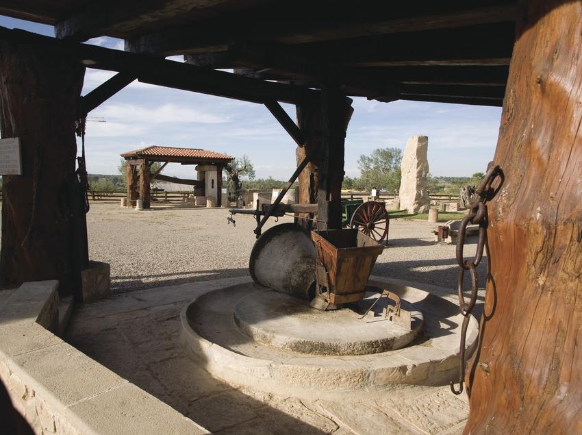 Les Borges Blanques. Olive Oil Theme Park.  (Miguel Raurich)