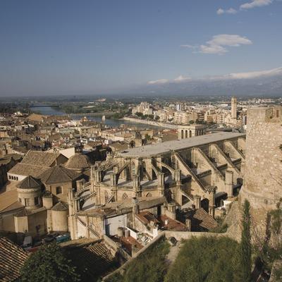La Seu i el casc antic des del Castell de La Suda  (Miguel Raurich)