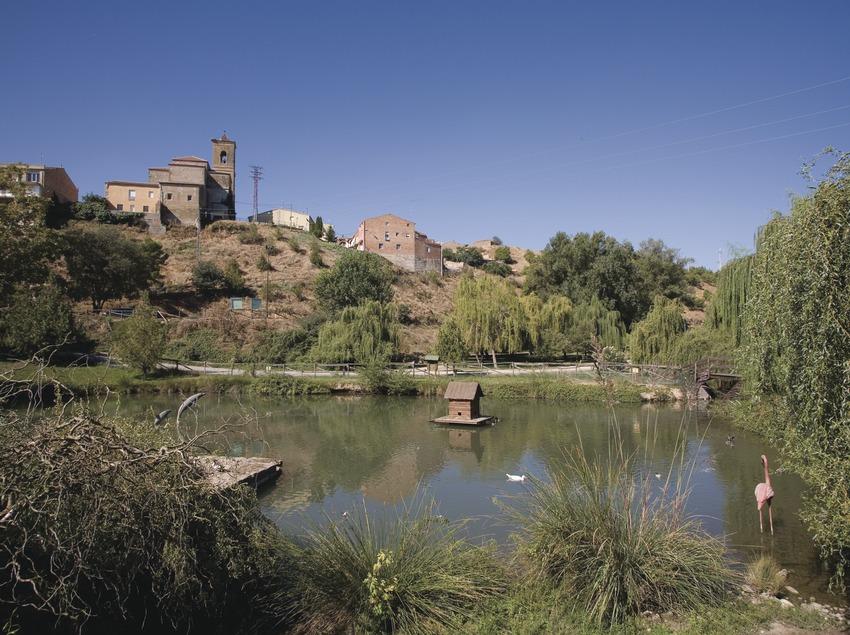 Parc de le la rivière au bord de la Noguera Ribagorçana