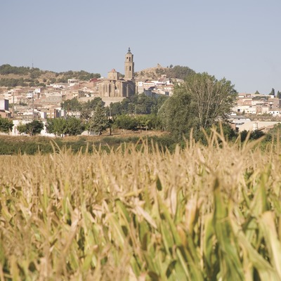 La localité et un champ de maïs  (Miguel Raurich)