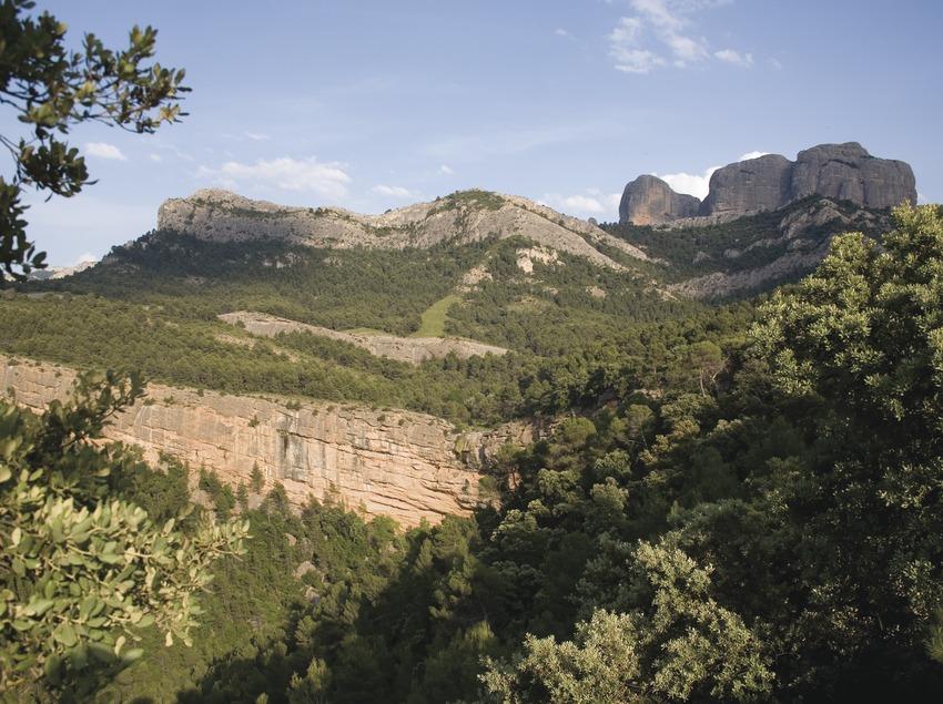 Felsen von Benet aus der Sicht vom Mas de la Franqueta in der Berglandschaft Puertos de Tortosa-Beseit  (Miguel Raurich)