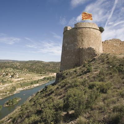 Castle, river Ebro and Riberas del Ebro Nature Reserve  (Miguel Raurich)