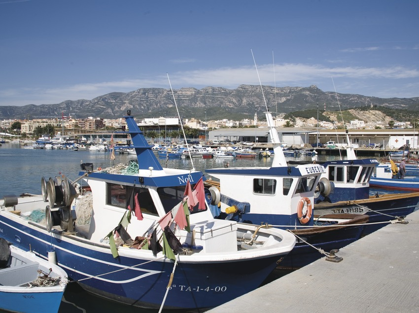 Port pesquer  (Miguel Raurich)